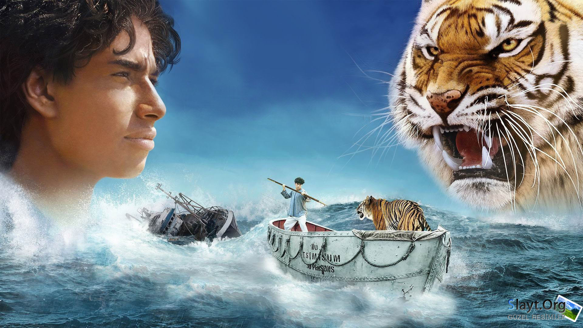 Life of Pi Wallpapers